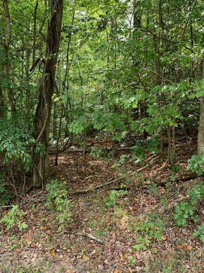 W ROCKWOOD FERRY RD, Kingston, TN 37763 - Photo 1