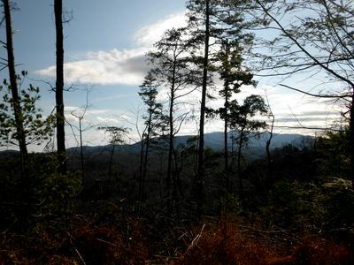 FAIRVIEW RD, Reliance, TN 37369 - Photo 2