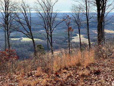 1177 ESCAPE DR, Evensville, TN 37332 - Photo 2