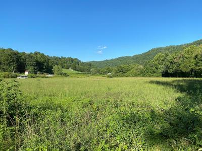HARNESS HOLLOW LANE, Briceville, TN 37710 - Photo 1
