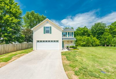 8218 JACK RUSSELL CT, Powell, TN 37849 - Photo 2