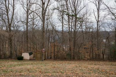 BADGER DRIVE, ANDERSONVILLE, TN 37705 - Photo 2