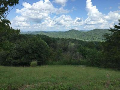 00 COLLINGSWORTH RD, SNEEDVILLE, TN 37869 - Photo 1
