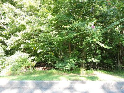 36 HAWTHORNE PL, Norris, TN 37828 - Photo 1