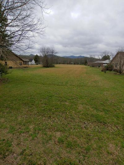 LOT 39 CLEARWATER DRIVE, TOWNSEND, TN 37882 - Photo 2