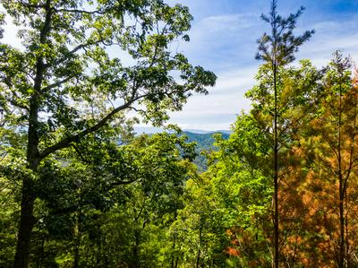 LOT 126E AND 127E SETTLERS VIEW LANE, Sevierville, TN 37862 - Photo 2