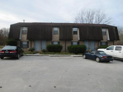 409 W WILLSON ST, Niota, TN 37826 - Photo 2