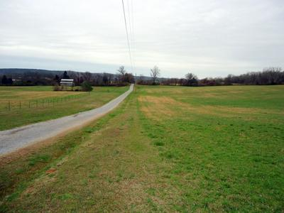 CO RD 323, SWEETWATER, TN 37874 - Photo 2