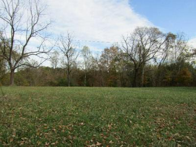 78 .62AC OLD MILL HILL RD, Dowelltown, TN 37059 - Photo 2