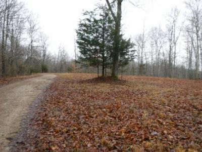 10.67AC COLEPIN RIDGE RD, CELINA, TN 38551 - Photo 2