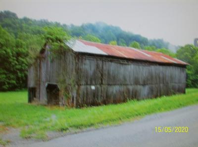 10480 CHESTNUT RIDGE RD, Eidson, TN 37731 - Photo 2