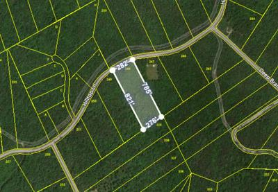 HILLTOP LANE, Wilder, TN 38589 - Photo 1