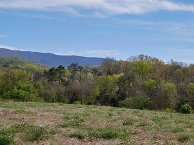 NEW BLOCKHOUSE RD, MARYVILLE, TN 37803 - Photo 2
