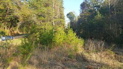 893 WILSON STATION RD, Englewood, TN 37329 - Photo 2