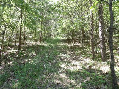 BROWN RD, Graysville, TN 37338 - Photo 2