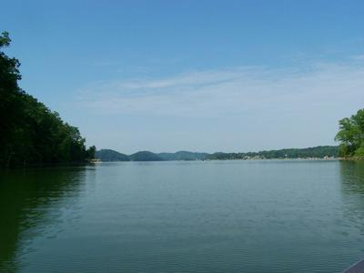 LOT 7 STONE COVE WAY, Dandridge, TN 37725 - Photo 2