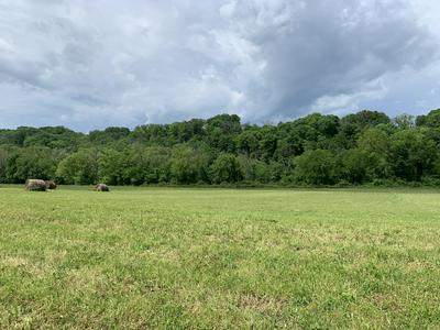 LOT 16-R SECLUDED RIVER CIRCLE, Parrottsville, TN 37843 - Photo 1