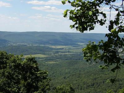 BROWN RD, Graysville, TN 37338 - Photo 1