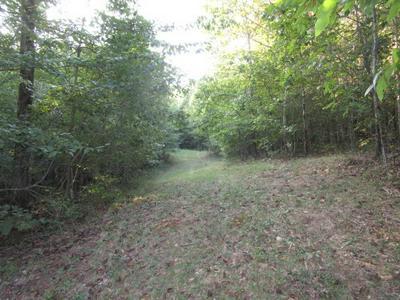 CEDAR ROCK, Rutledge, TN 37861 - Photo 1