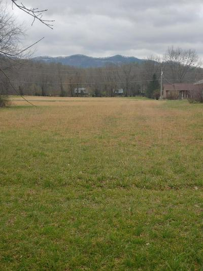 LOT 39 CLEARWATER DRIVE, TOWNSEND, TN 37882 - Photo 1