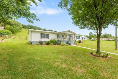 845 HEAD OF CREEK RD, Sweetwater, TN 37874 - Photo 2