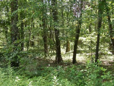 0 BROWN RD, Graysville, TN 37338 - Photo 2
