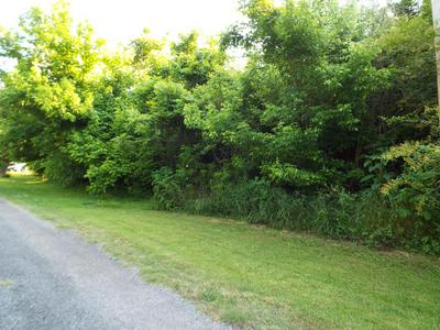 RIVER CHASE WAY, Cosby, TN 37722 - Photo 2