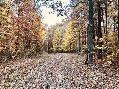 WHITE OAK LANE, Crawford, TN 38554 - Photo 2