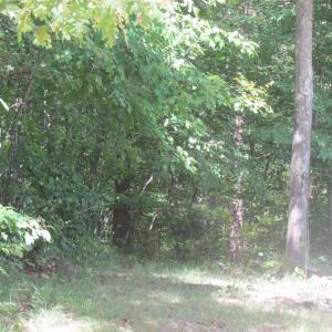 W O MARTHA WASHINGTON RD, Clarkrange, TN 38553 - Photo 1