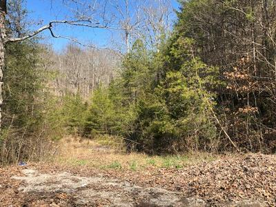 N DARK HOLLOW RD, ANDERSONVILLE, TN 37705 - Photo 2