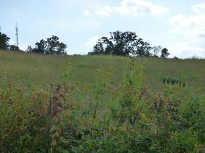 LOT 4R RAMBLING ROSE LN, Jefferson City, TN 37760 - Photo 1