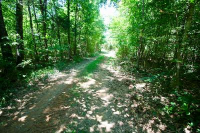 HWY 58 S, Decatur, TN 37322 - Photo 2