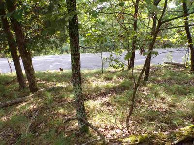 1433 ECHOTA LN, Mooresburg, TN 37811 - Photo 2
