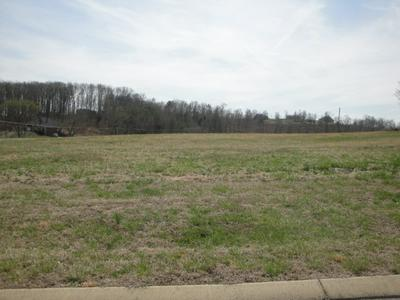 LOT 46 CHIPPEWA LANE, Rutledge, TN 37861 - Photo 1