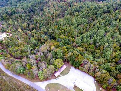 16 ACRES BLACK MOUNTAIN RD, Hartford, TN 37753 - Photo 1