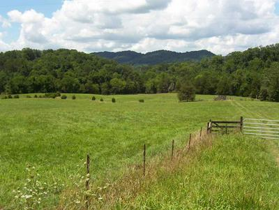 CLINE ROAD, Dandridge, TN 37725 - Photo 1
