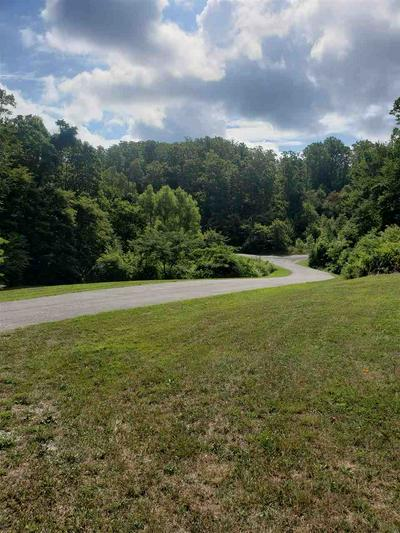 LOT #43 DOUGLAS OVERLOOK WAY, Newport, TN 37821 - Photo 1