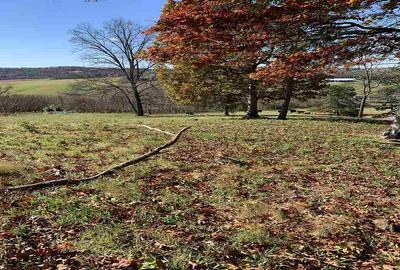 13.33 ACRES WARRENSBURG, Whitesburg, TN 37891 - Photo 2