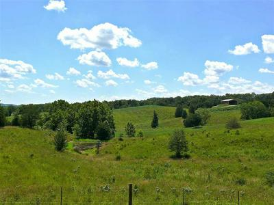 11 ACRES JIM HENRY ROAD, Dandridge, TN 37725 - Photo 1