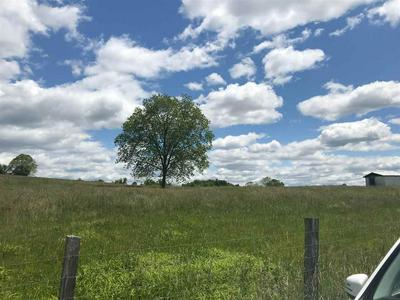 LOTS 2 & 3 WESTWOOD ROAD, Mohawk, TN 37810 - Photo 1