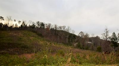 138 N WHITE PINE RD, Talbott, TN 37877 - Photo 1