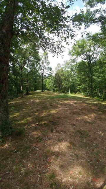 3441 RUTLEDGE PIKE, Blaine, TN 37709 - Photo 2