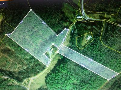 24 ACRES BLACK MOUNTAIN RD, Hartford, TN 37753 - Photo 2