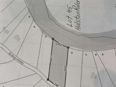 LOT 45 HOLSTON RIVER DR, Rutledge, TN 37861 - Photo 1