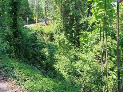 LOT 3 STANS ROAD, Gatlinburg, TN 37738 - Photo 2