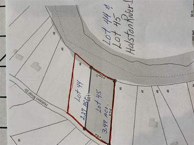 LOTS 44 & 45 HOLSTON RIVER DR, Rutledge, TN 37861 - Photo 1