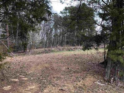 0 GREENBRIAR, TALBOTT, TN 37881 - Photo 1