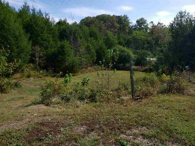 1275 PHILLIPS HOLLOW RD, BYBEE, TN 37713 - Photo 2