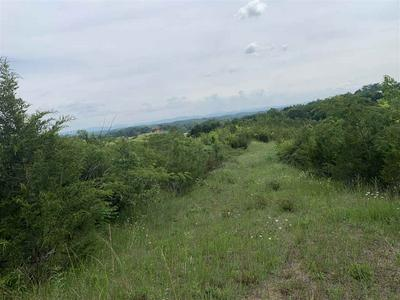 30.14 ACRES BLUE SPRINGS PARKWAY, Mosheim, TN 37818 - Photo 2