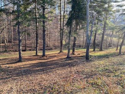2048 EDGEWATER SOUND, Morristown, TN 37814 - Photo 2